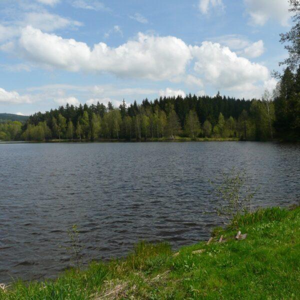výkup rybníka